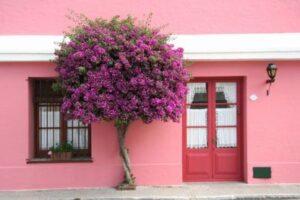 Consejos para pintar una fachada
