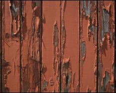 Sencillos trucos para evitar que las paredes se pelen