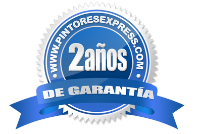 pintores express profesionales